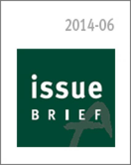 Issue Watch: Guide to Key Policy Concerns in South Korea for 2014
