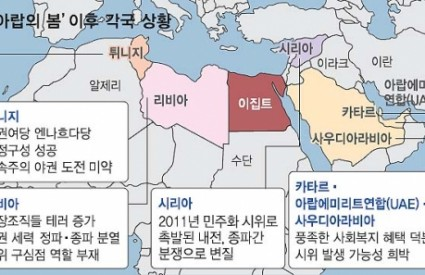 "[Seoul Shinmun] ""Differences between the Egyptian crisis and the 'Arab Spring'"""