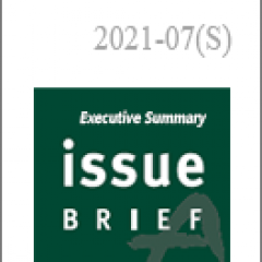 U.S. Climate Policy and Issues in the Biden Era