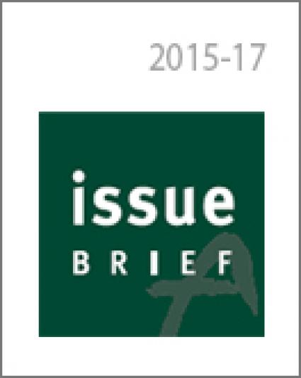 Not Good Enough: South Korea's 2030 Carbon Mitigation Target and the INDC