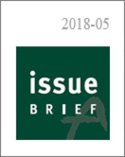 Expert Opinions on the  Inter-Korean Summit
